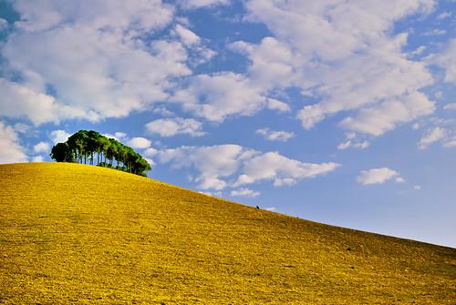 フリー画像| 自然風景| 丘の風景| 樹木の風景|        フリー素材|
