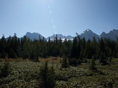 Larch Valley (vertphoto) Tags: canada rockymountains lakelouise banffnationalpark lakemoraine