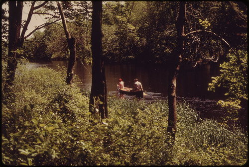 Canoeing on the Charles River Audubon Society Reservation at Natick 05/1973