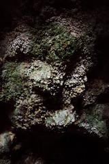 2009-05-12-IMG_0080-2 (abnormalcy) Tags: hawaii kauai cave canonef35mmf2 haenastatepark