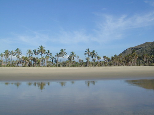 Playa Baja - Todos Santos Beaches