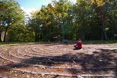 Folioj blovas super labirinto