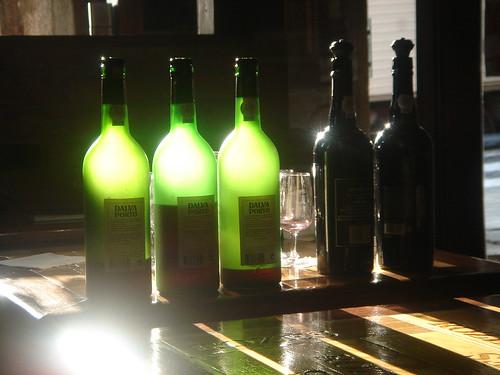 Port Wine bottles in Vinologia, Porto