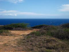 Picture 396 (Spectral Waves) Tags: ocean hanaumabay oahuhawaiiislandenvironmentlandscape
