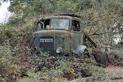 Commer-cabbed Fordson timber tractor KPW691E (fryske) Tags: abandoned car truck junk rust antique rusty lorry junkyard scrapyard van scrap salvage derelict relic