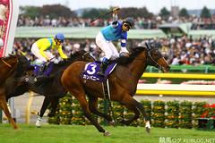Emperor's Cup - Company (KeibaKate) Tags: horse japan tokyo company  vodka horseracing gi thoroughbred   emperorscup