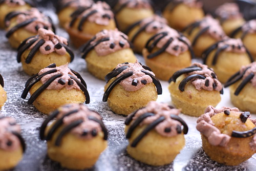 Mini spider cupcakes
