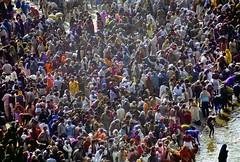 INDIA1040/  MAHA KHUMB..................................... (Glenn Losack, M.D.) Tags: india lady religious asia veiled with delhi muslim islam homeless prayer religion poor impoverished beggar holy ganesh gods bathing mumbai hindu hinduism mysore kolkata leprosy puja mosques ganges cremation ghats beggars benares streetphotographer भारत indiax glosack जयहोindia अद्भुतभारत photographyxstreet beggarsxbeggars indiaxleperladyxleper kidsxstreetxphotographyxstreet photographerxindiaxglosackximpoverishedxdelhixleprosyxmosquesxislamxhinduismxdeformedxlepersxmentalxpatientsxdisenfranchisedxbegging carsxindian beggarsxbeggingxkolkata