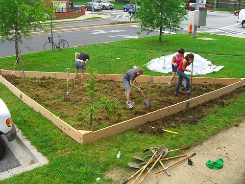 09 05 16 Tinges Commons garden planting 01.jpg