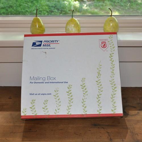 even the box screams MAYA