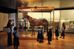 Melbourne 2009 - Melbourne Museum (12)