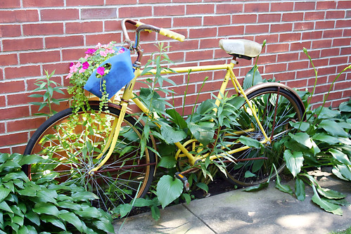 Bicycle as Planter