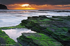 Turimetta Beach Sunrise (-yury-) Tags: ocean sea sun seascape water clouds sunrise canon landscape weed rocks australia nsw cokin sydmey     turimetta