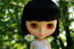 Meet Daisy / 263-365