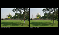 shades of green, agra (nevil zaveri) Tags: trees india tree heritage monument up architecture garden photography blog photographer photos muslim islam tomb towers stock taj mahal tajmahal agra images mausoleum photographs photograph marble muslims zaveri wonders islamic stockimages pradesh travelogue uttar nevil uttarpradesh minars theverybestofme nevilzaveri moghual