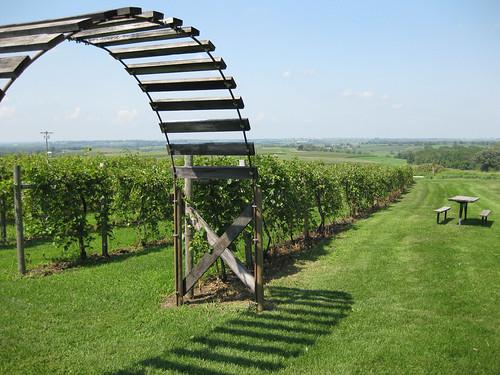 Galena Cellar's Vineyard