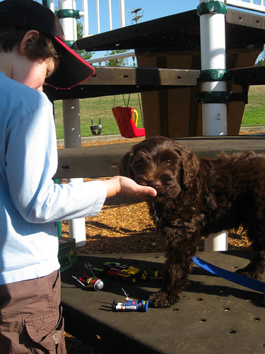 Playing Playmobile at the park with ewok