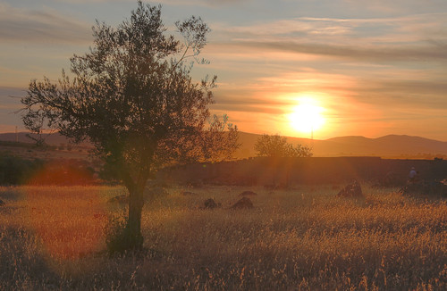 Extremadura Sunset (HDR)