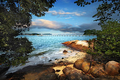 Chek Jawa, Singapore (williamcho) Tags: sea tourism nature singapore ngc explore wetlands mangroves frontpage topgun rockybeach attraction pulauubin sandybeach chekjawa seagrasslagoon coralrubble coastalforest offshoreisland flickraward naturewatcher mostbeautifulpicture astoundingimage williamcho