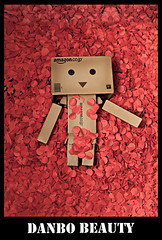 Danbo Beauty (achew *Bokehmon*) Tags: red flower zeiss paper movie sony rip holes carl punch alpha bestfriend americanbeauty danbo 2470 a850 2hours danboard ryzan76
