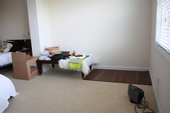 floor (aftonrio) Tags: newborn setup
