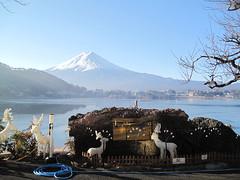 富士山 & 河口湖