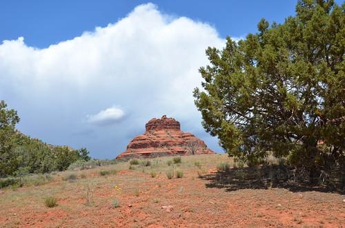 Arizona 2011 520
