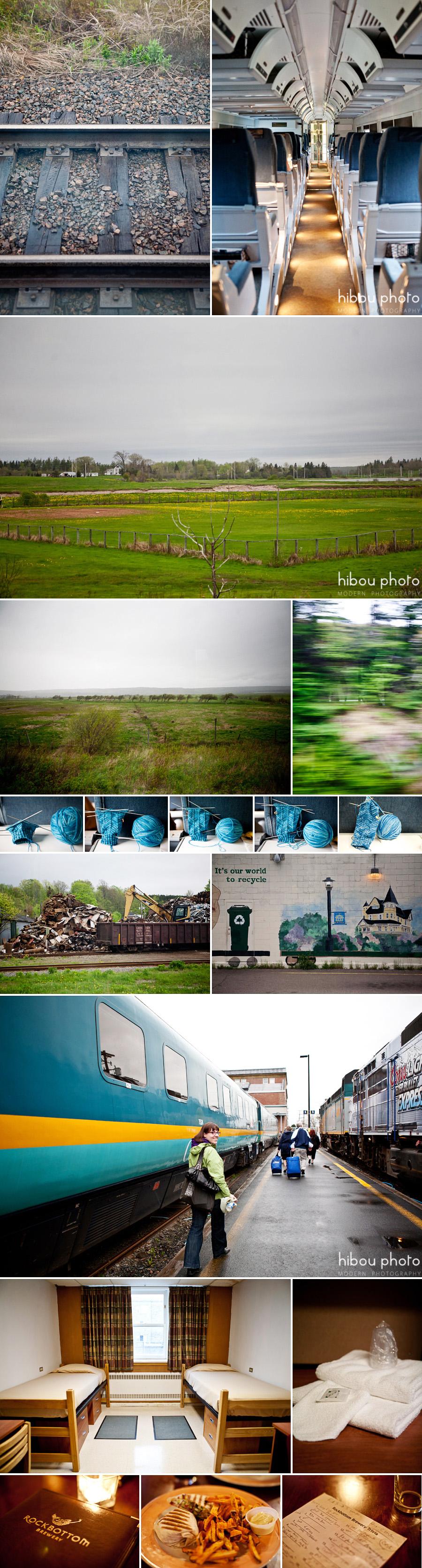 hibou photo - fredericton photographer