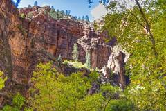 Illuminated Ledge (Herculeus.) Tags: 5photosaday zionnationalpark zion treees mountain cliff ledge sunlight erosion outside outdoors outdoor landscape fall canyon