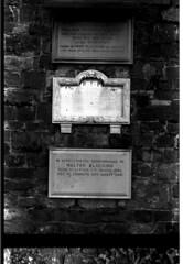Exeter Graveyard-3 (1977)
