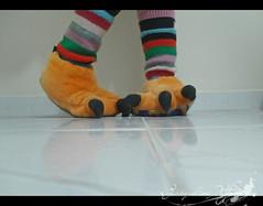 My orange monster feet (Jack Venancio) Tags: de laranja pés minhas monstro pantufas