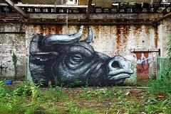 Roa - Urbex Graffiti - Ghent (_Kriebel_) Tags: street art graffiti belgium belgique belgi ghent gent gand urbex roa kriebel roabot