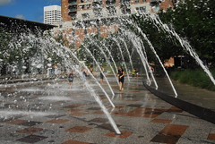 discovery green 196 (danistillman) Tags: discoverygreen