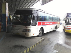 at dau central bus terminal =) (Api =)) Tags: bus rabbit lines space hyundai aero philippine 9507 prbl