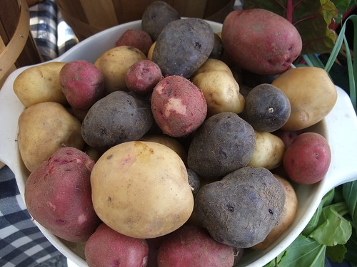 Potatoes from Flying J Farms