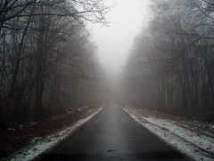 Little foggy forest road (ichael C.) Tags: voyage road trip winter france fog forest drive driving belgium belgique little hiver foggy roadtrip route luxembourg brouillard fort 57 metz 59 brume trajet tourcoing