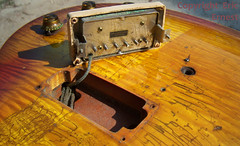 Vintage Gibson 1959 Les Paul Standard guitar BURST PAF pickup photo guitar collecting (eric_ernest) Tags: old musician music classic 1955 boston museum vintage u2 book photo google maple cool photos guitar band guitars musical american metallica 1958 1957 acoustic brazilian 1956 burst mojo custom rare luthier guitarist recording aerosmith rockandroll mahogany 59 1959 therollingstones guitarplayer zztop facebook madeinusa 1960 vibe petergreen 58 moneyshot iphone paf guitarcollection jimmypage jonasbrothers madeintheus guitarrig alnico vintageguitar twitter guitarshow petergreene vintageguitars brazilianrosewood 1959gibsonlespaul sarahpalin guitarshows guitarcollections rareguitar guitarphotos guitargibson rareguitars guitarcollecting pafpickups abalonevintage 1959lespaul vintageguitarauthentication