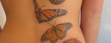 borboletas tatuagens