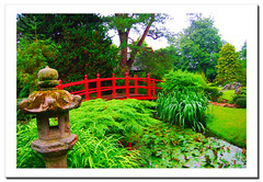Japanese Garden (2).- (ancama_99(toni)) Tags: trip travel flowers ireland light red vacation irish plants paisajes naturaleza holiday plant flores flower color colour verde green art nature floral fleur colors beautiful beauty gardens fleurs garden landscape geotagged island photography japanese photo petals rojo flora nikon europa europe foto photos flor natura photographic irland eire petal fotos fotografia fiori nikkor paysage fiore paesaggi 2009 emeraldisle irlanda paisagens irlande kildare fotografas d60 eireann republicofireland nationalstud nikond60 landschaftsaufnahmen mywinners abigfave holidaysvacanzeurlaub theunforgettablepictures ancama99 atomicaward