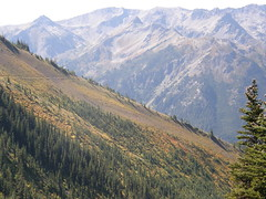 Views heading back to Marmot Pass.