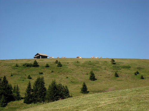 Stille der Berge 1