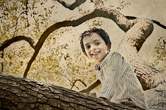 SAIF (irfan cheema...) Tags: china autumn pakistan boy portrait tree smile face climb kid child shanghai son saif irfancheema familygetty2010