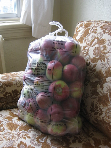 15kg of apples