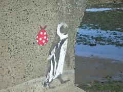(samantha waugh) Tags: sea urban seaweed bird art beach water rock graffiti penguin weed rocks stones pools pollution worn weathered scarborough rockpools