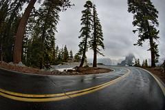 Yosemite Glacier Point Curve With Half Dome in Stormy Winter Horizon (Greg - AdventuresofaGoodMan.com) Tags: california road ca usa fog america turn forest nationalpark bend pavement gray fisheye yosemite halfdome redwoods curve glacierpoint nikond80 greggoodman powerfulskies