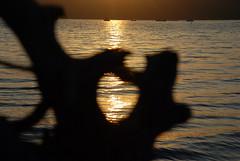 Holmes Harbor Sunrise (MichaelBarrow) Tags: water silhouette sunrise boats washington hole heart driftwood whidbeyisland treestump freeland southwhidbeyisland holmesharbor yourcountry