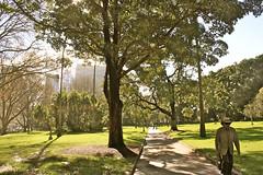 Rencontre dans Hyde Park (semaryp) Tags: park city man tree grass hat town path sydney australia hyde chapeau arbre parc ville homme herbe australie alle semaryp