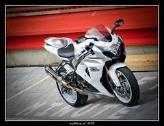 GSX-R 1000 k9 (Antonin Douard) Tags: r 600 moto suzuki motogp k8 rossi 1000 gsx k6 rizla gp k9 k4 k5 gsxr 750 vermeulen k7 gsv capirossi