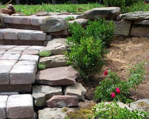 Terrace Garden Steps
