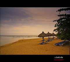 Saman #17 (r.batista) Tags: ocean vacation sun beach nature water landscape spring sand dominicanrepublic explore atlanticocean 2009 saman aplusphoto